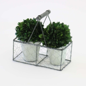 Boxwood basket with 2 globes Front view